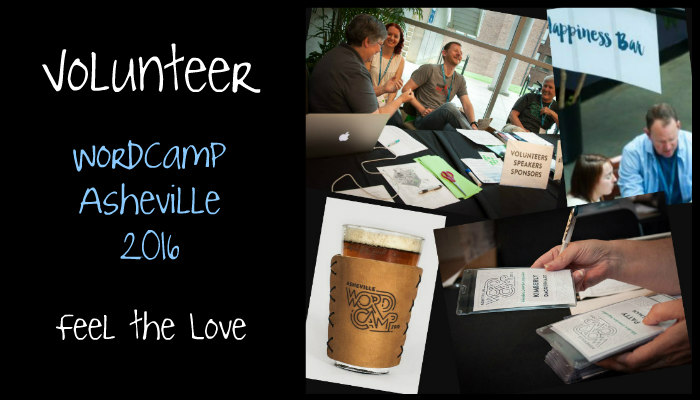 volunteer-WCAVL-2016